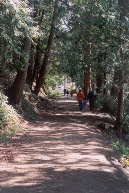 Voting with their feet: A popular path for walkers, the Willingdon Beach trail sees more than 300 people a day.